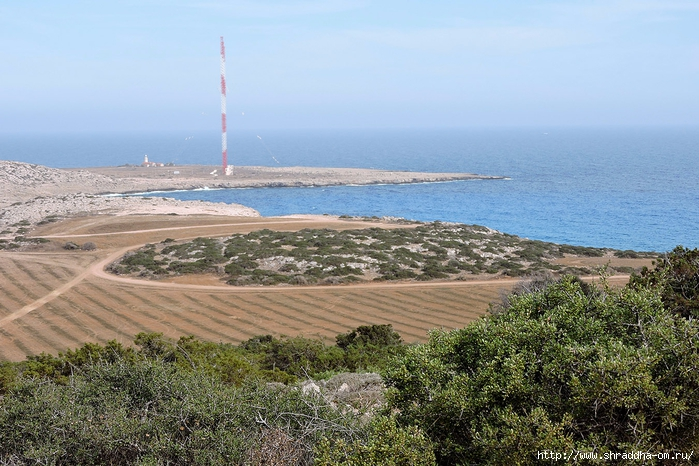 Кипр, май 2016 (331) (700x466, 311Kb)