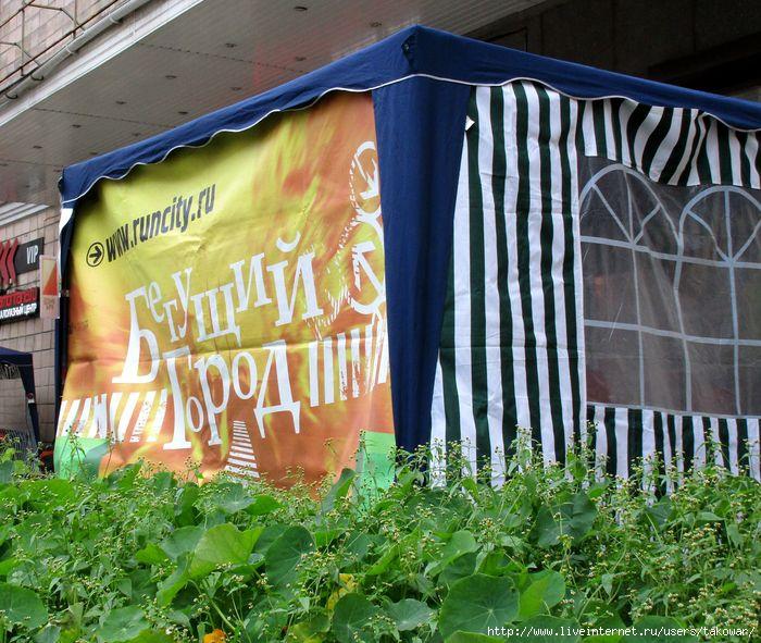 Бегущий город. Санкт-Петербург 2016/1476050371_IMG_0969 (700x591, 277Kb)