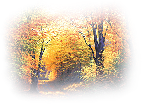 47117048_27590165_AbsolutelyAutumn_MistedByGini_091606_copy (500x366, 451Kb)