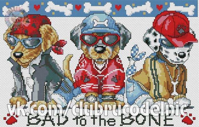 Bad To The Bone (700x448, 492Kb)