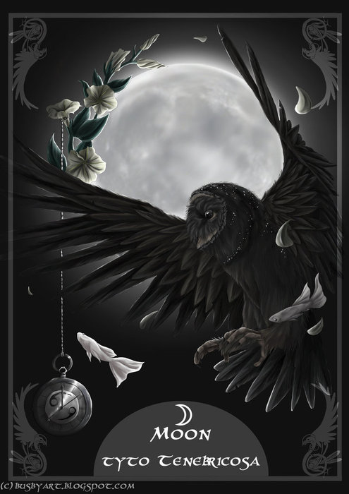 solar_owls_moon_by_busbyart-d4si440 (495x700, 57Kb)