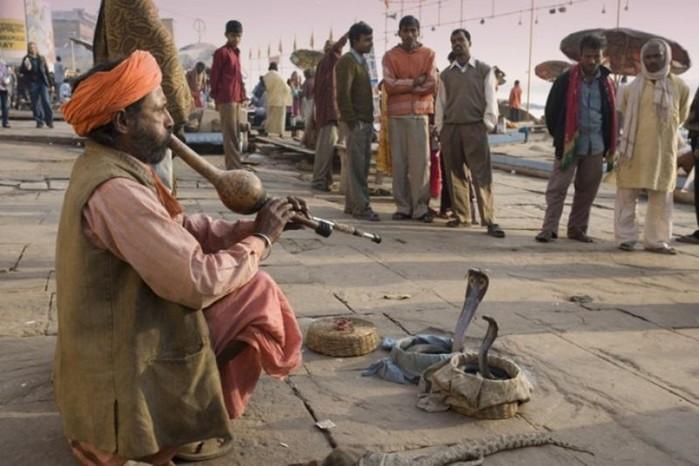 Трюки индийских факиров   заклинателей змей