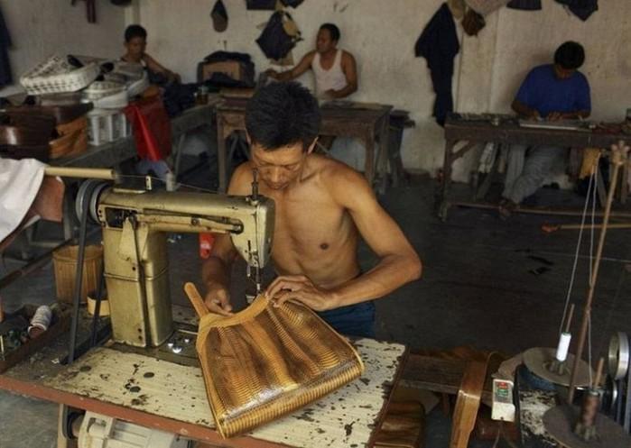 Видео: действие яда на кровь и «змеиная скотобойня» в Индонезии