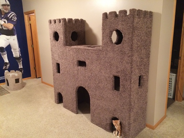 cat-castle (640x480, 284Kb)
