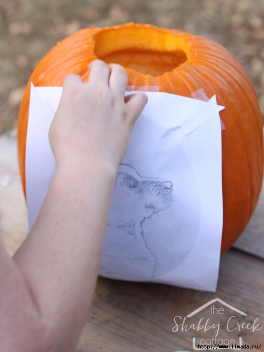 How-to-make-a-pumpkin-carving-template-tutorial (525x700, 188Kb)