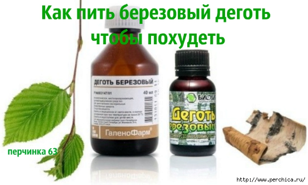 4979645_berezovydegot_1 (620x372, 125Kb)