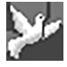 голубок (75x75, 23Kb)