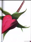 Превью 347_Monique Bonnin - Les coeurs stylises au point de croix - 2009_Страница_35 (516x700, 216Kb)