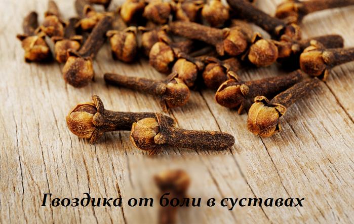 2749438_Gvozdika_ot_boli_v_systavah (700x442, 540Kb)