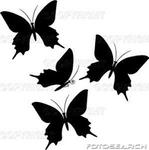 Превью 1156362_borboletas--bwbw0038 (252x253, 32Kb)