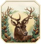 Превью Free-Vintage-Christmas-Image-Deer-GraphicsFairy (654x700, 715Kb)
