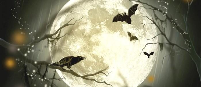 halloween-party-a-genova-aperitivo-a-genova-1200x520 (700x303, 47Kb)
