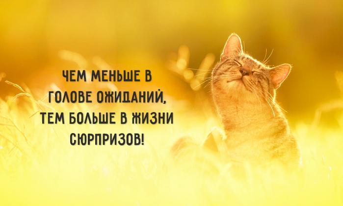 3085196_1477805948_1 (699x421, 27Kb)