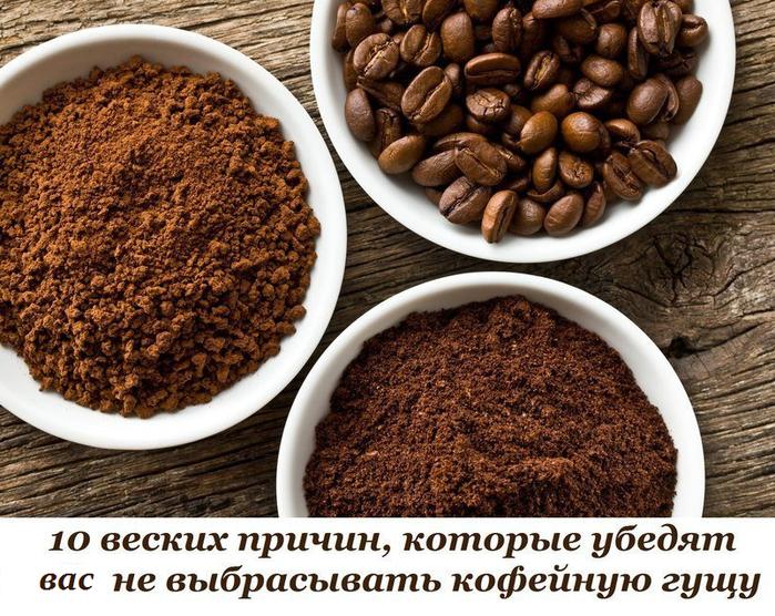 5365358_kofeinaya_gysha_1_ (700x556, 785Kb)