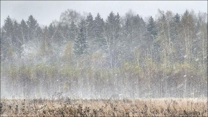 Снежный занавес/3673959_10 (700x393, 99Kb)
