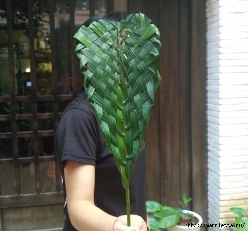 Как заплести лист пальмы (1) (490x457, 120Kb)