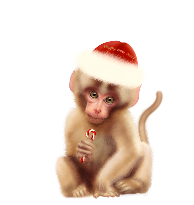 5948199_Monkey_New_Year_png__2 (661x700, 281Kb)