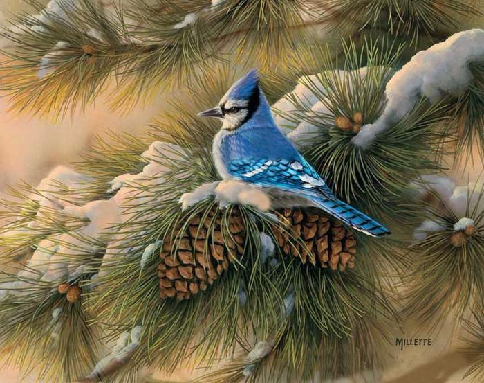 xudozhnik-Rosemary-Millette-04-e1427008361670 (700x553, 462Kb)