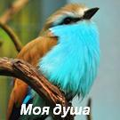 97730750_large_big_fotometki_image_ac7e678b (135x135, 15Kb)