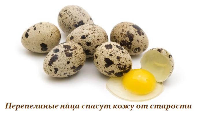 2749438_Perepelinie_yaica_spasyt_kojy_ot_starosti (700x405, 240Kb)