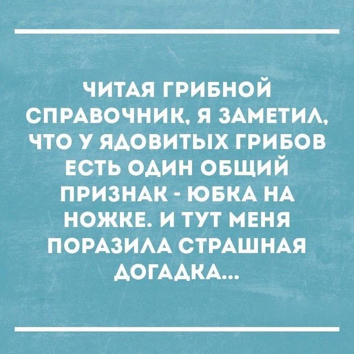 3416556_image_3_ (700x700, 120Kb)