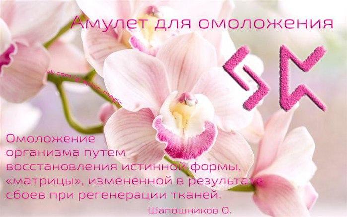 5916975_nkczhYLsl_U (700x437, 65Kb)