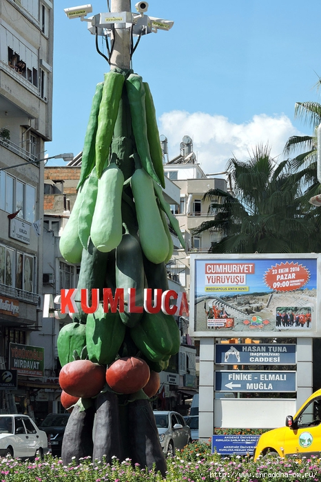 Shraddha_trаvel Турция 2016 (191) (466x700, 319Kb)
