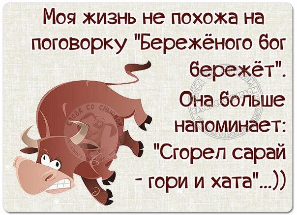 1463429055_frazki-1 (604x436, 285Kb)