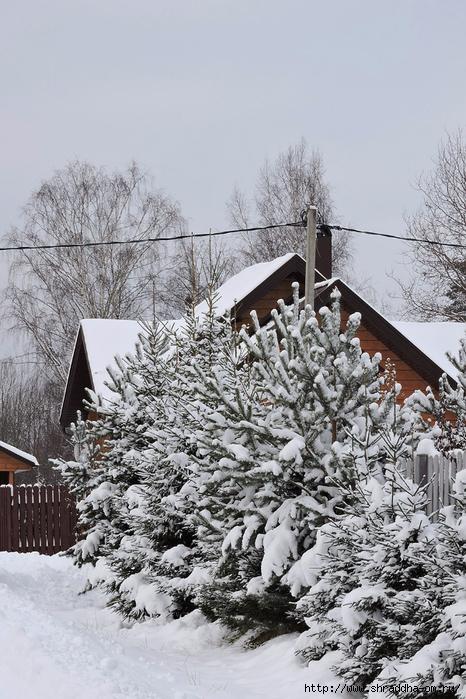 а за городом зима, зима, зима (1) (466x700, 313Kb)