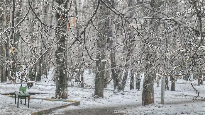 Ледяной дождь/3673959_1_1_ (700x393, 118Kb)