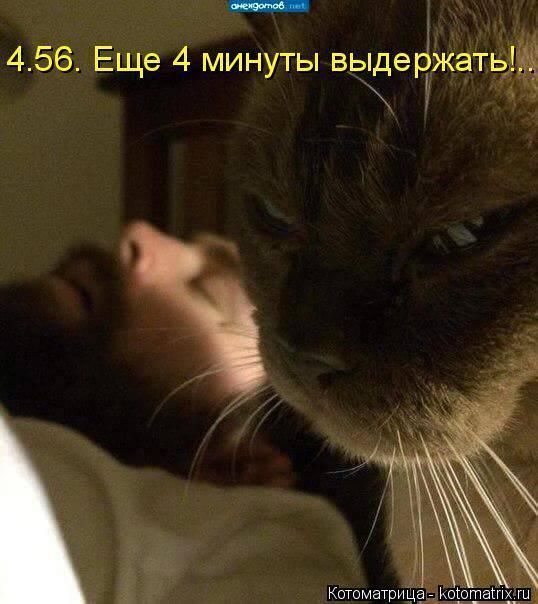 16 (538x604, 219Kb)