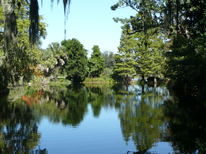Lake_at_Magnolia_Plantation,_SC (700x525, 266Kb)