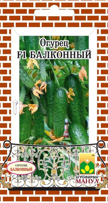 Огурец F1 Балконный/4716525_Ogyrec__Balkonnii_F1 (373x700, 248Kb)