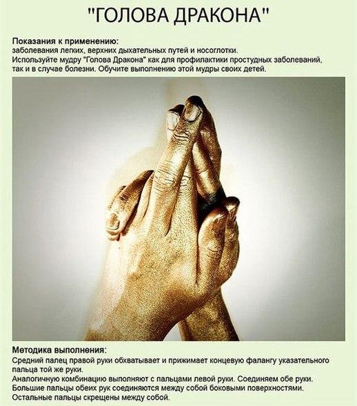 0_8be66_c2b32612_XLgolova-drakona-legkie-nosoglotka (518x588, 71Kb)
