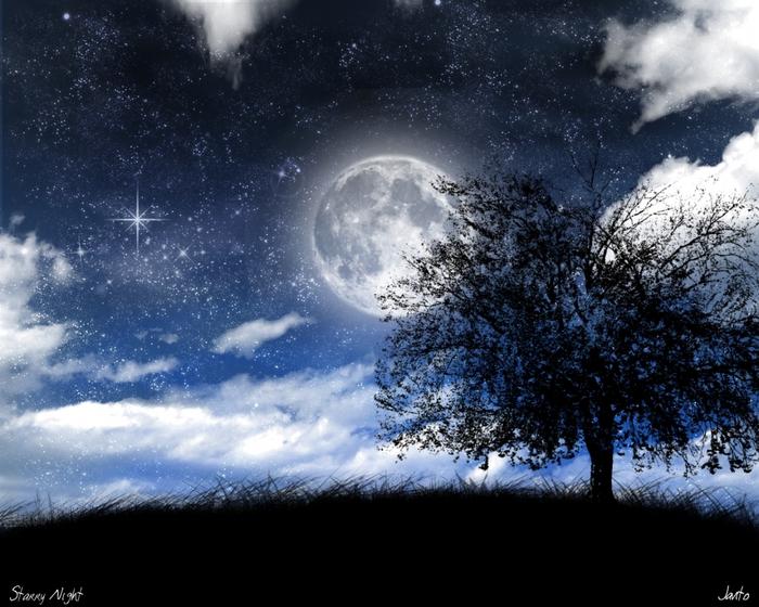 1496350_2016Starry_Night_by_JJGP1 (700x560, 299Kb)
