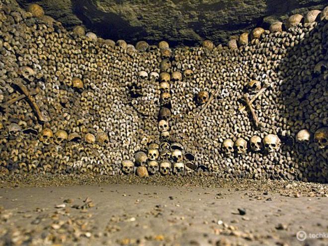 6121696_12_catacombs_paris_rtr2o65t (660x495, 138Kb)