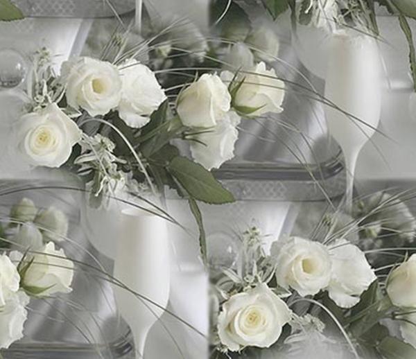 belye-rozy-foto-01 (600x518, 156Kb)