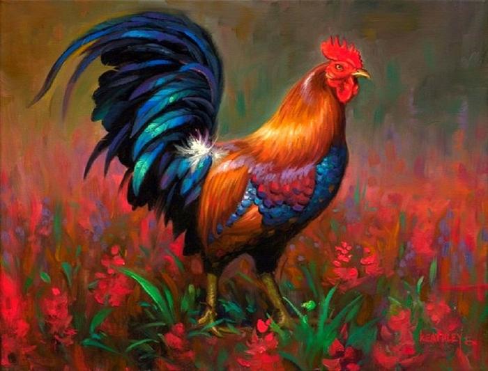 the_beauty_rooster_lovely_hen_beautiful_hd-wallpaper-1845086-1024x780 (700x533, 391Kb)