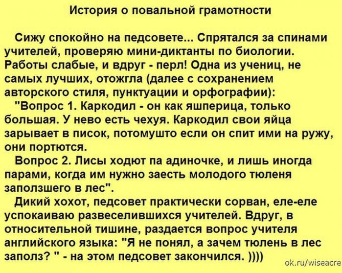 3925311_gramotnost (700x558, 347Kb)