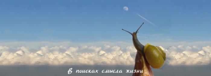 "alt=""В поисках смысла жизни""/2835299_V_poiskah_smisla_jizni (700x253, 181Kb)"