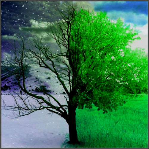 Seasons-tree (1) (500x500, 78Kb)