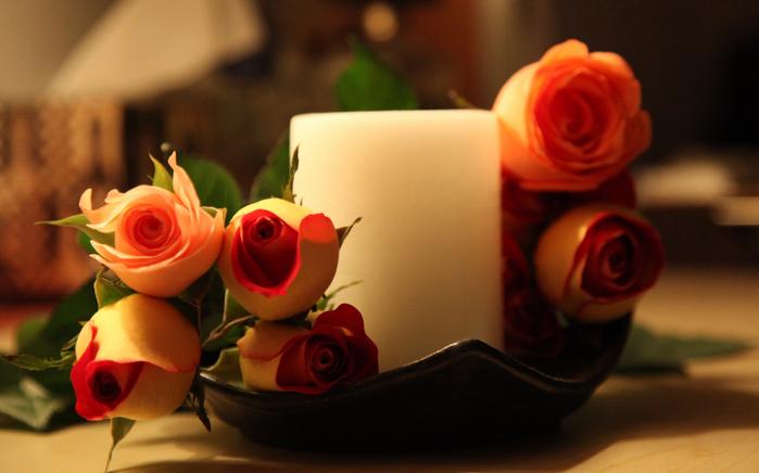 розы и любовь 7 (700x436, 292Kb)
