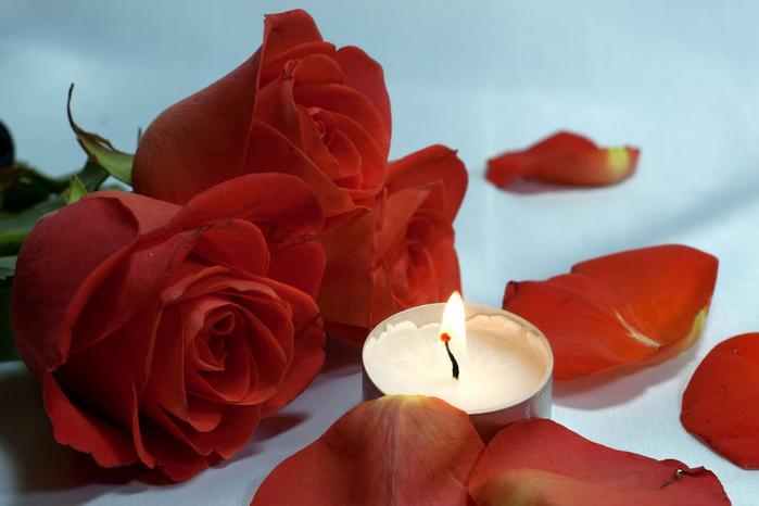 розы и любовь 8 (700x466, 260Kb)