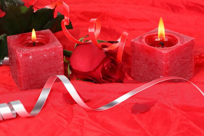 розы и любовь 13 (700x466, 410Kb)