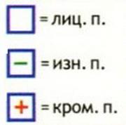 мп4 (180x178, 12Kb)