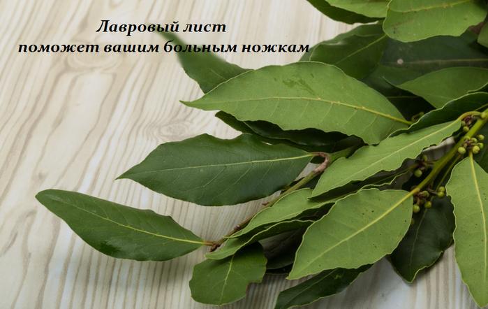 2749438_Lavrovii_list_pomojet_vashim_bolnim_nojkam (700x442, 455Kb)