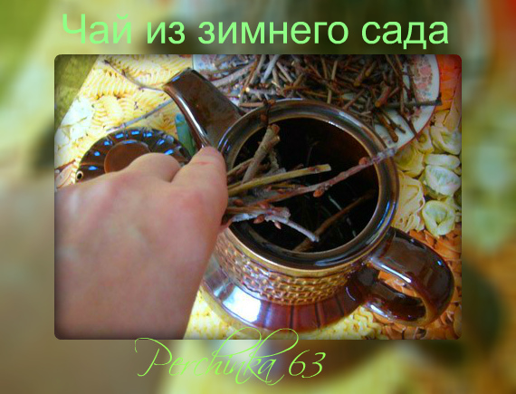 4979645_chay_iz_vetok_0 (570x435, 145Kb)