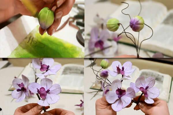 orhidei-gotovo (600x400, 35Kb)