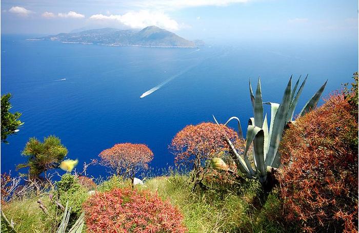 Capri_04 (700x455, 427Kb)