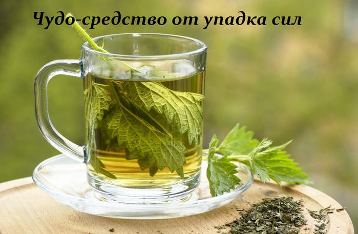 2749438_Chydosredstvo_ot_ypadka_sil (700x456, 448Kb)